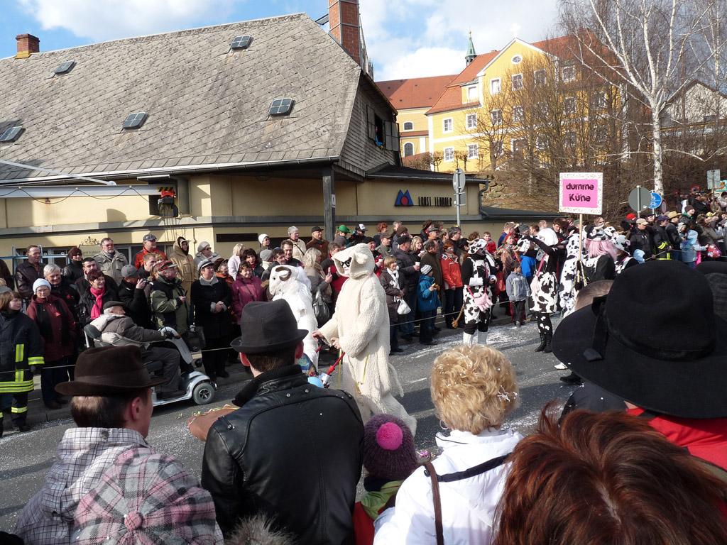 karneval_schirgiswalde_092