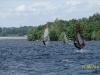 windsurfen_bautzen37