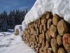 Holz Seiser Alm